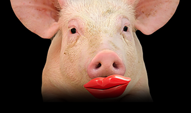 The Fed is Just About Out of Lipstick!