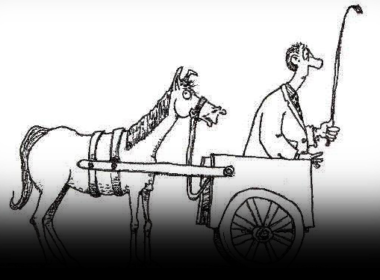 Let's Not Put the Cart Before the Horse, History Shows It Doesn't Work!